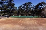公園テニスコート